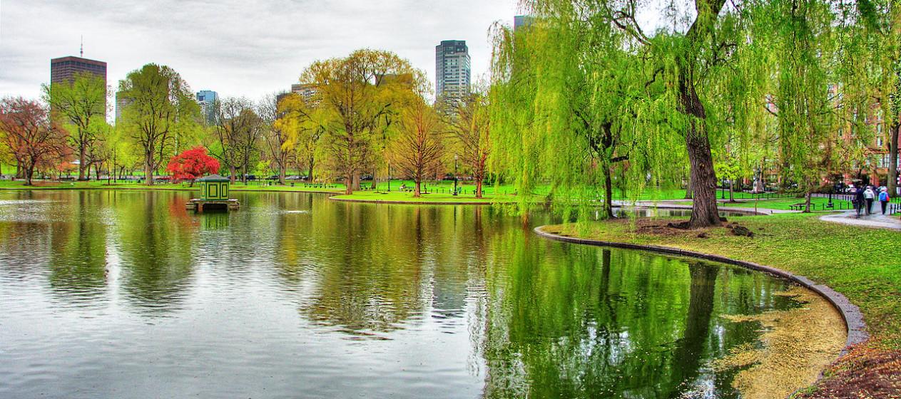 America\'s Greenest Cities | CITI IO