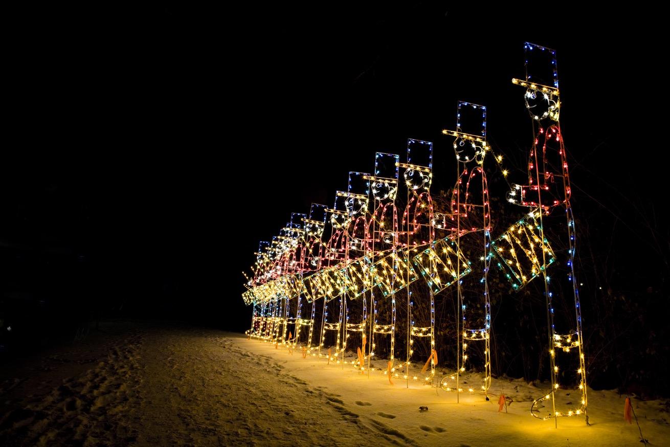 100 Callaway Gardens Fantasy In Lights Christmas Light